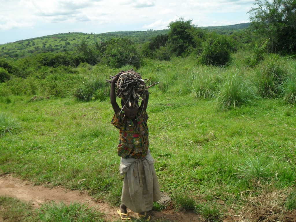 Girl carrying firewood